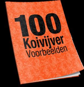 100koivijver_voorbeelden_bonus